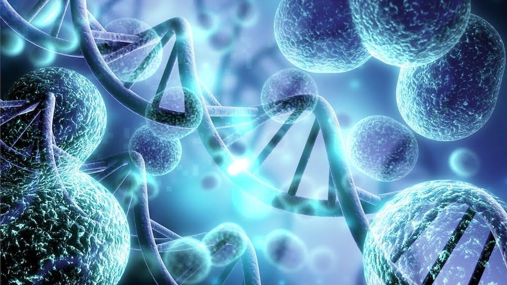 Regenerative medicine.